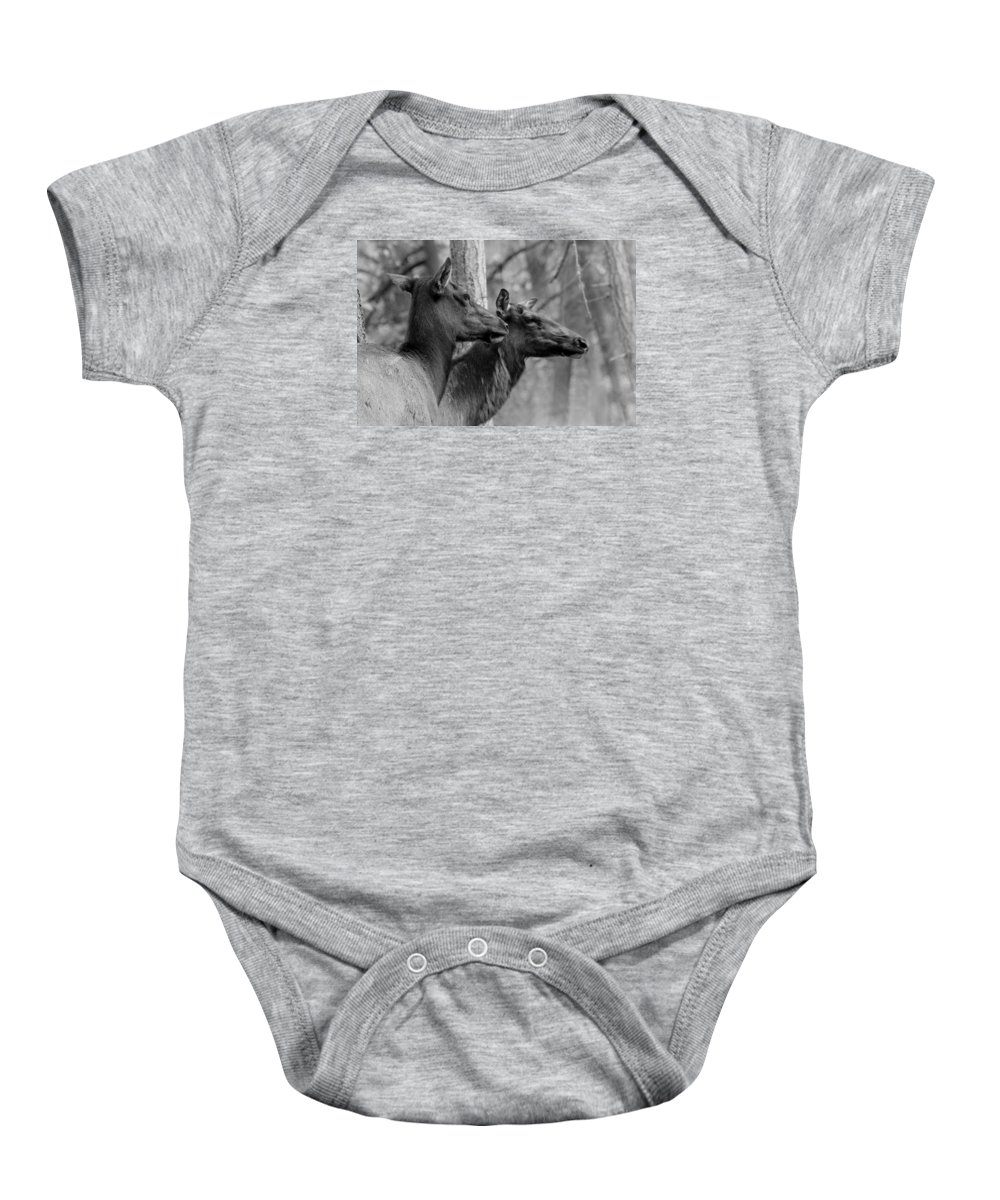 Black And White Baby Onesie featuring the photograph Black And White Elk by Steve McKinzie