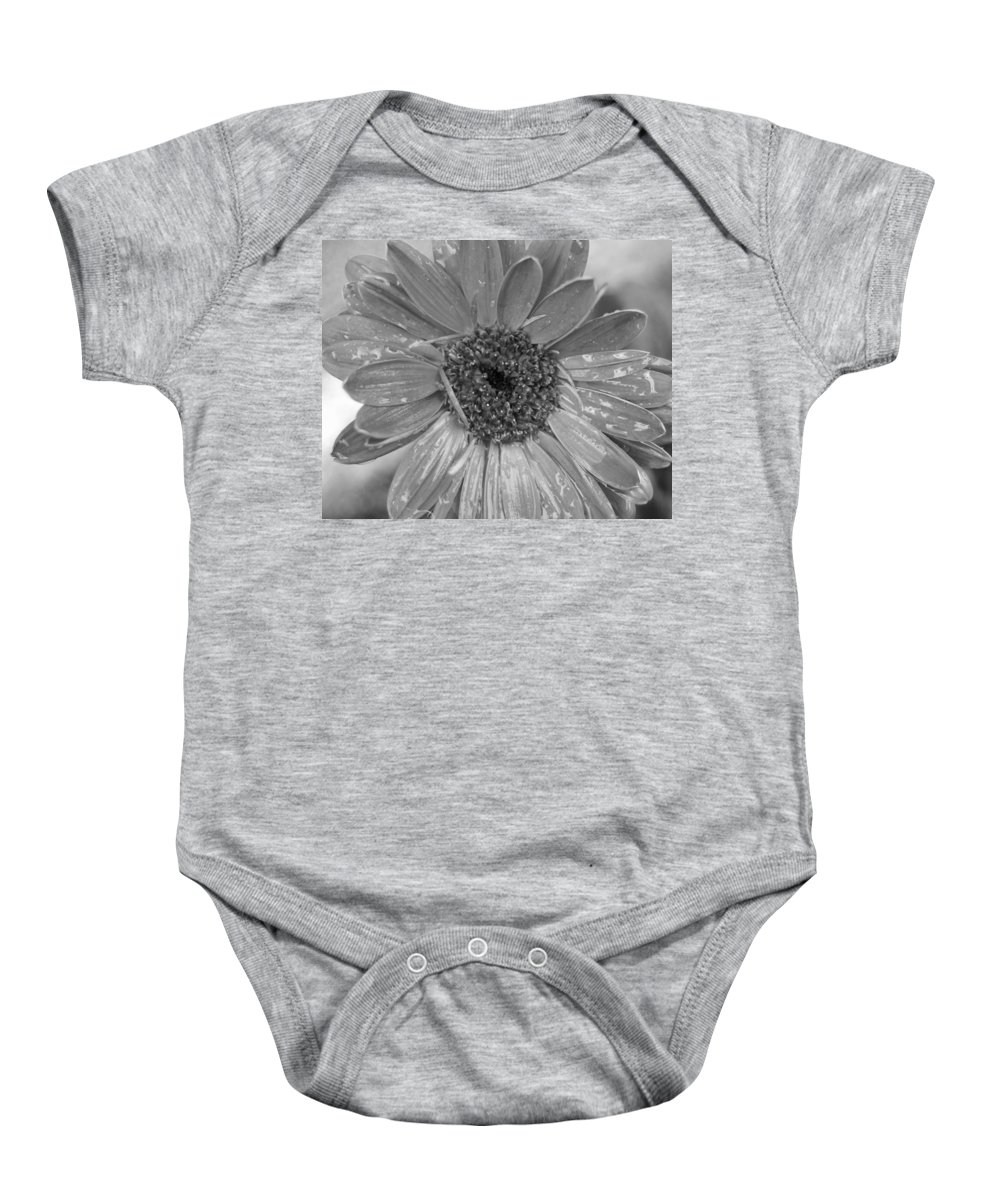 Gerber Daisy Baby Onesie featuring the photograph Black And White Gerbera Daisy by Amy Fose