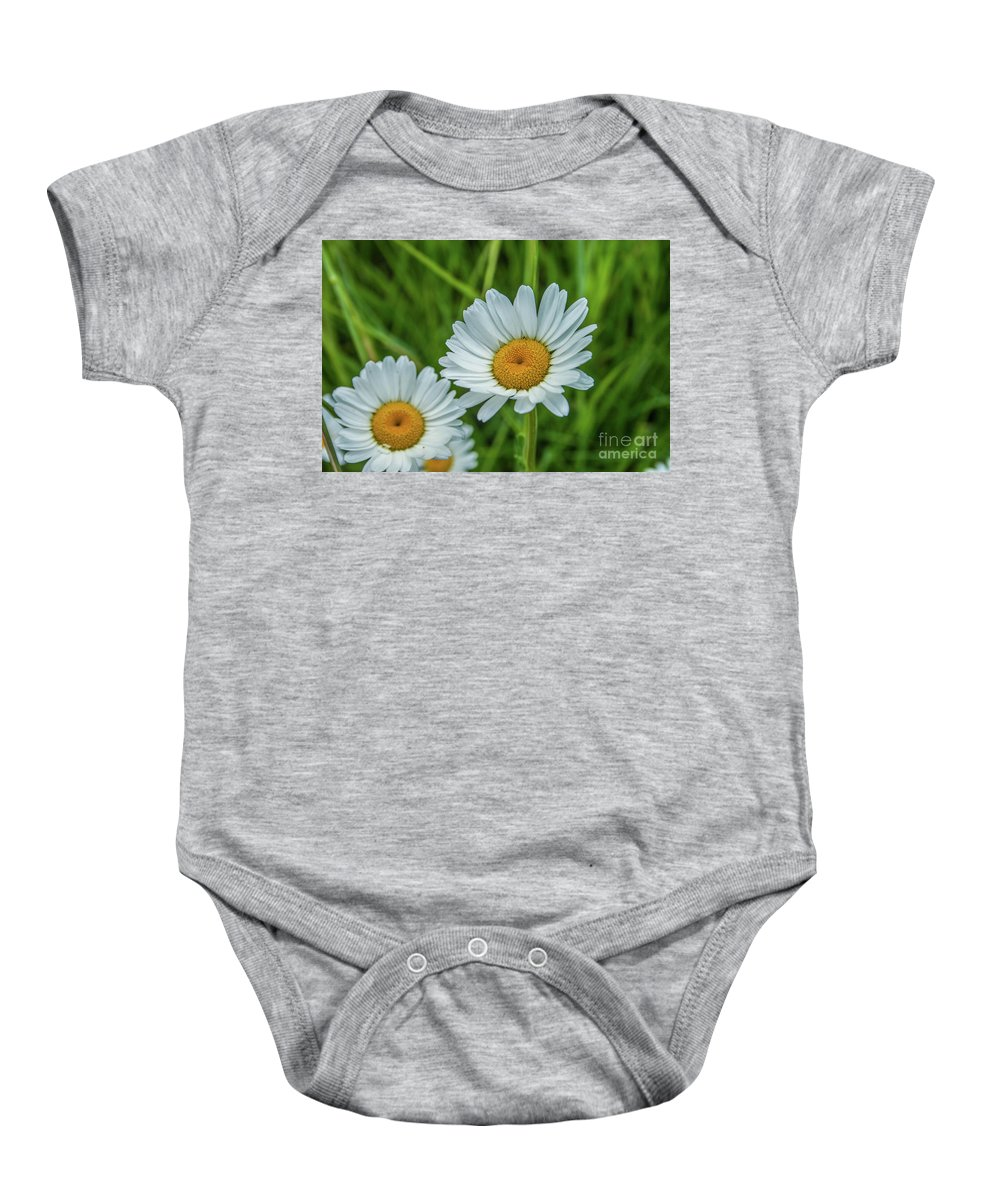 Flower Baby Onesie featuring the photograph Black-headed Daisy's by Tony Baca