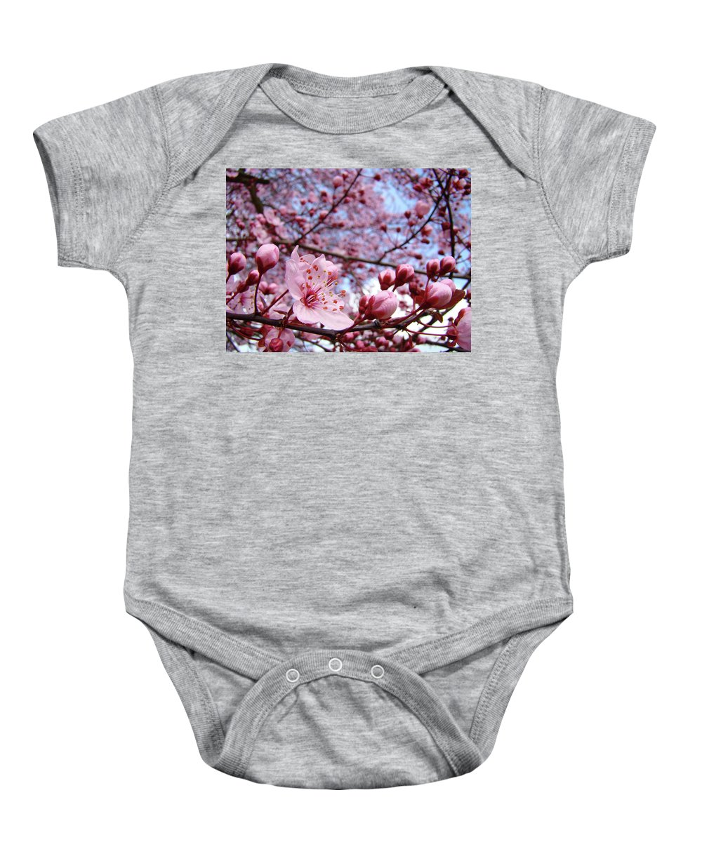 Blossom Baby Onesie featuring the photograph Blossoms Art Blue Sky Spring Tree Blossoms Pink Giclee Baslee Troutman by Baslee Troutman