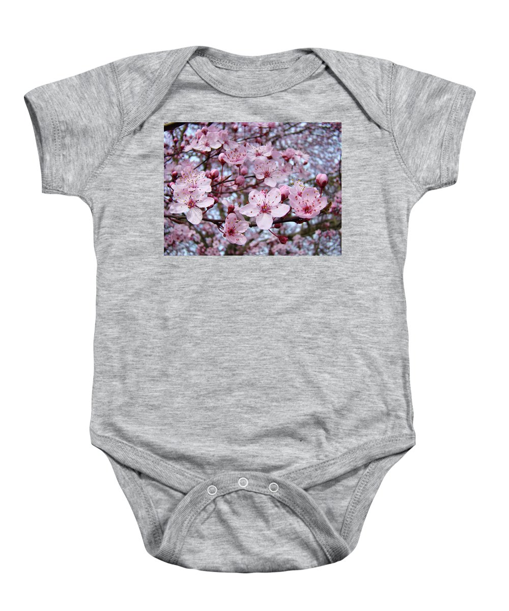 Blossom Baby Onesie featuring the photograph Blossoms Art Prints Nature Pink Tree Blossoms Baslee Troutman by Baslee Troutman