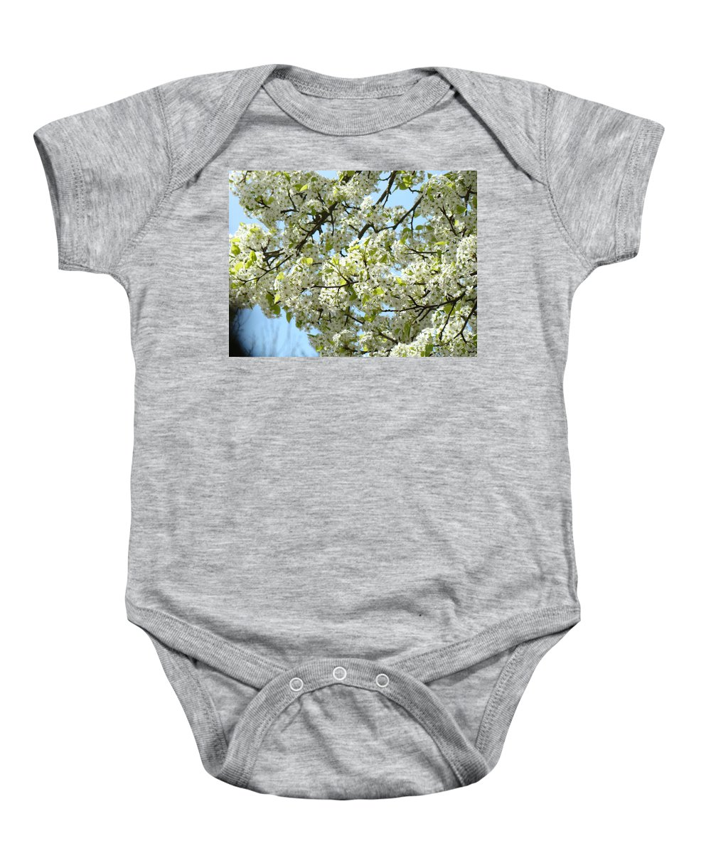 �blossoms Artwork� Baby Onesie featuring the photograph Blossoms Whtie Tree Blossoms 29 Nature Art Prints Spring Art by Baslee Troutman