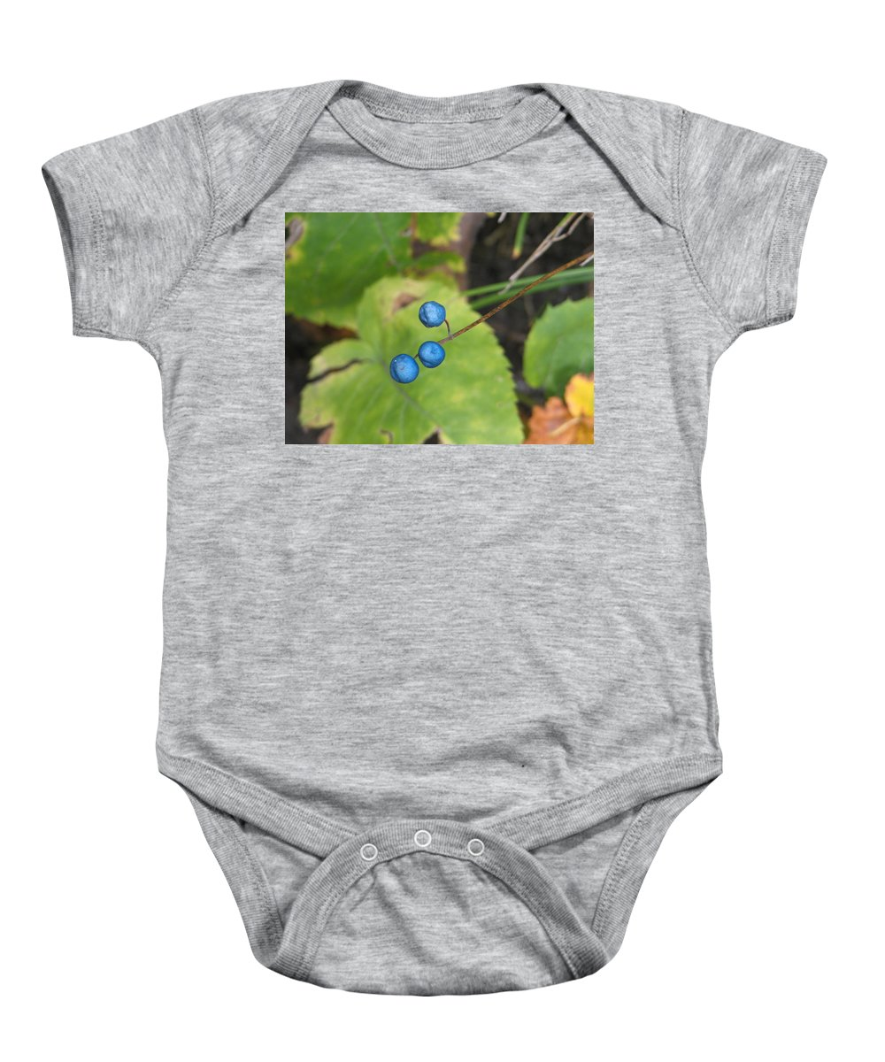 Blue Baby Onesie featuring the photograph Blue Berries by Kelly Mezzapelle