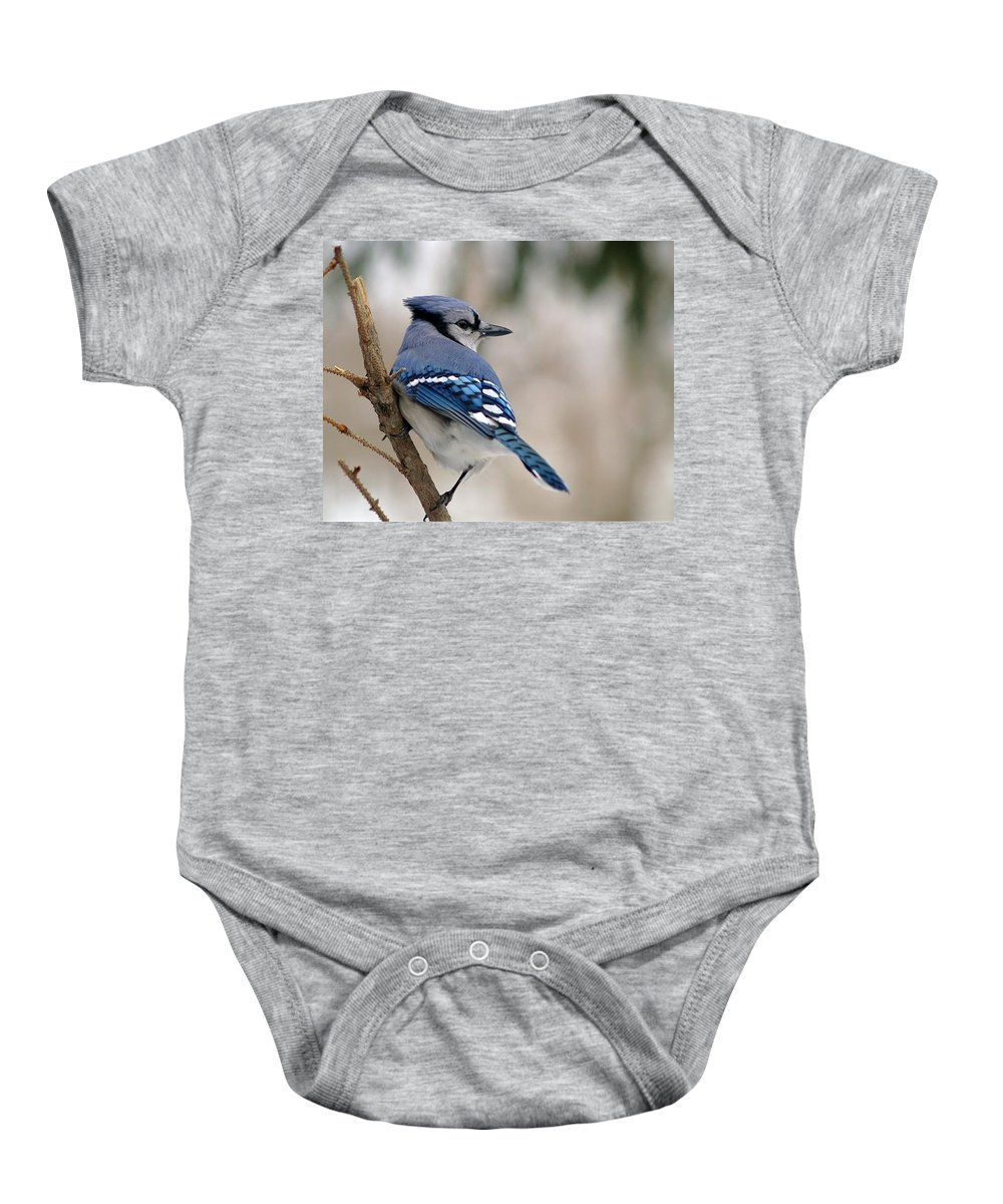 Blue Jay Baby Onesie featuring the photograph Blue Jay by Gaby Swanson