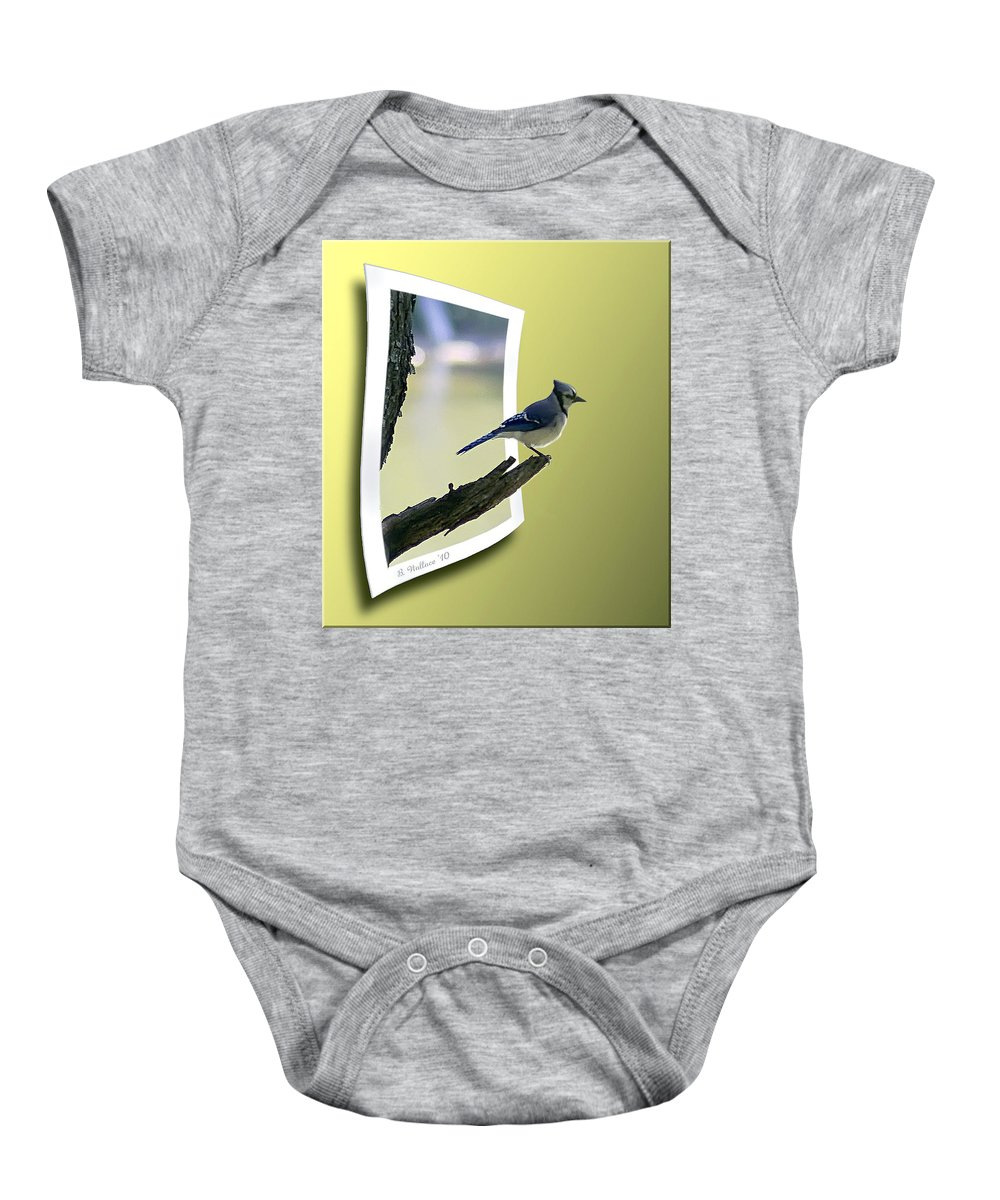 2d Baby Onesie featuring the photograph Blue Jay Perched by Brian Wallace