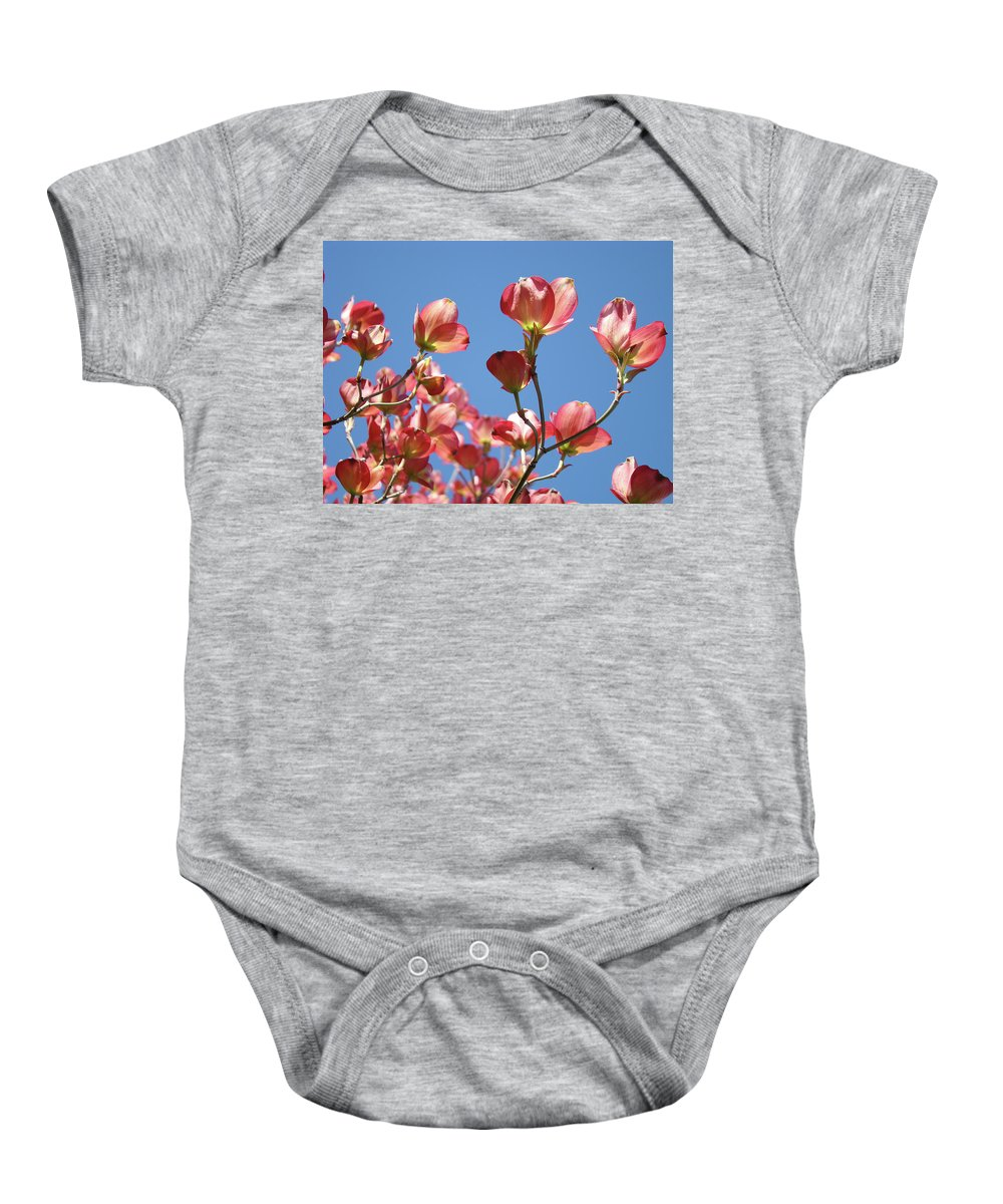 Dogwood Baby Onesie featuring the photograph Blue Sky Art Prints Pink Dogwood Flowers 16 Dogwood Tree Art Prints Baslee Troutman by Baslee Troutman