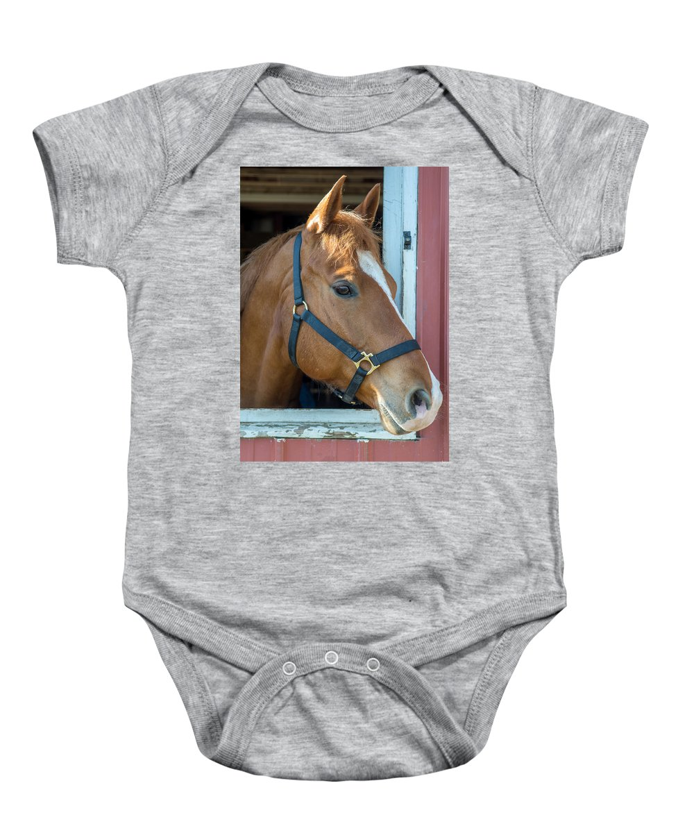 Charger Baby Onesie featuring the photograph Bode 15061 by Guy Whiteley