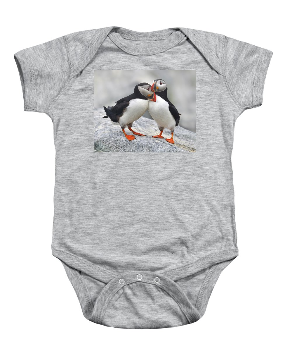 Atlantic Puffin Baby Onesie featuring the photograph Bonded And Banded by Tony Beck