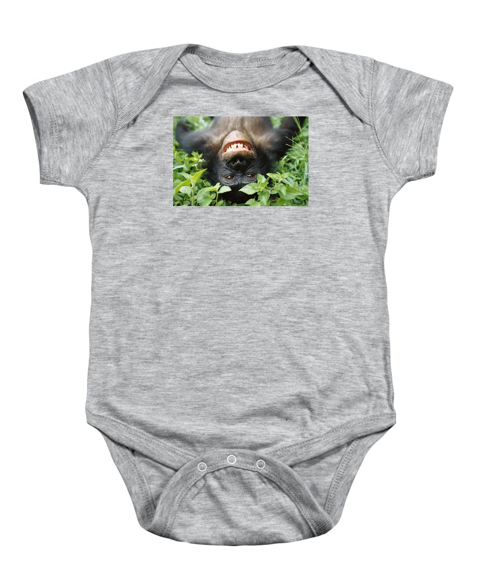 Mp Baby Onesie featuring the photograph Bonobo Smiling by Cyril Ruoso