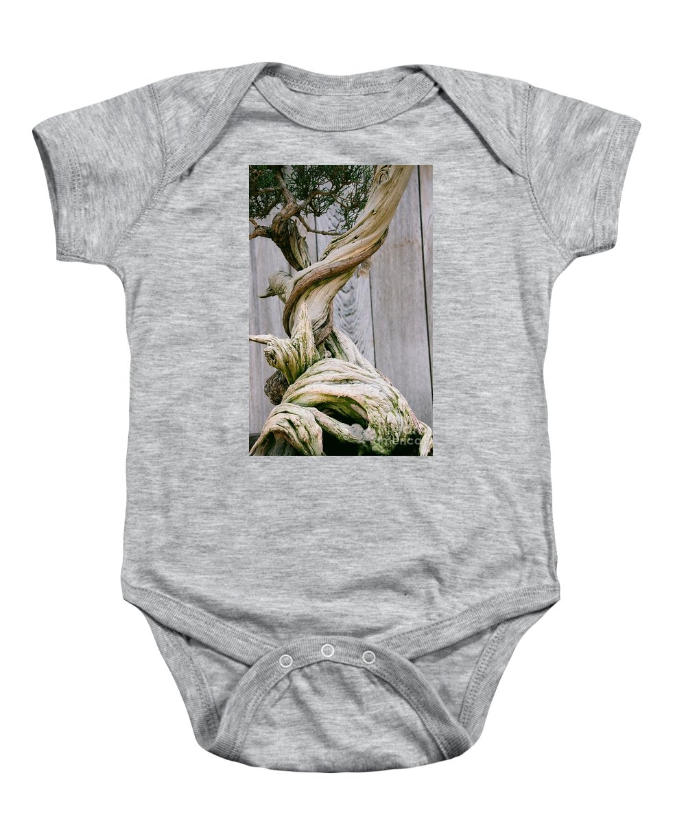 Tree Baby Onesie featuring the photograph Bonsai by Dean Triolo