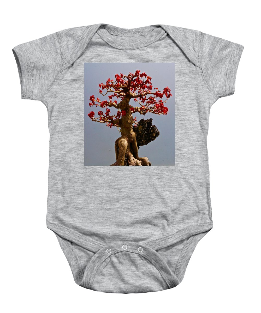 Japanese Baby Onesie featuring the photograph Bonsai Spring Wardrobe by Tim G Ross