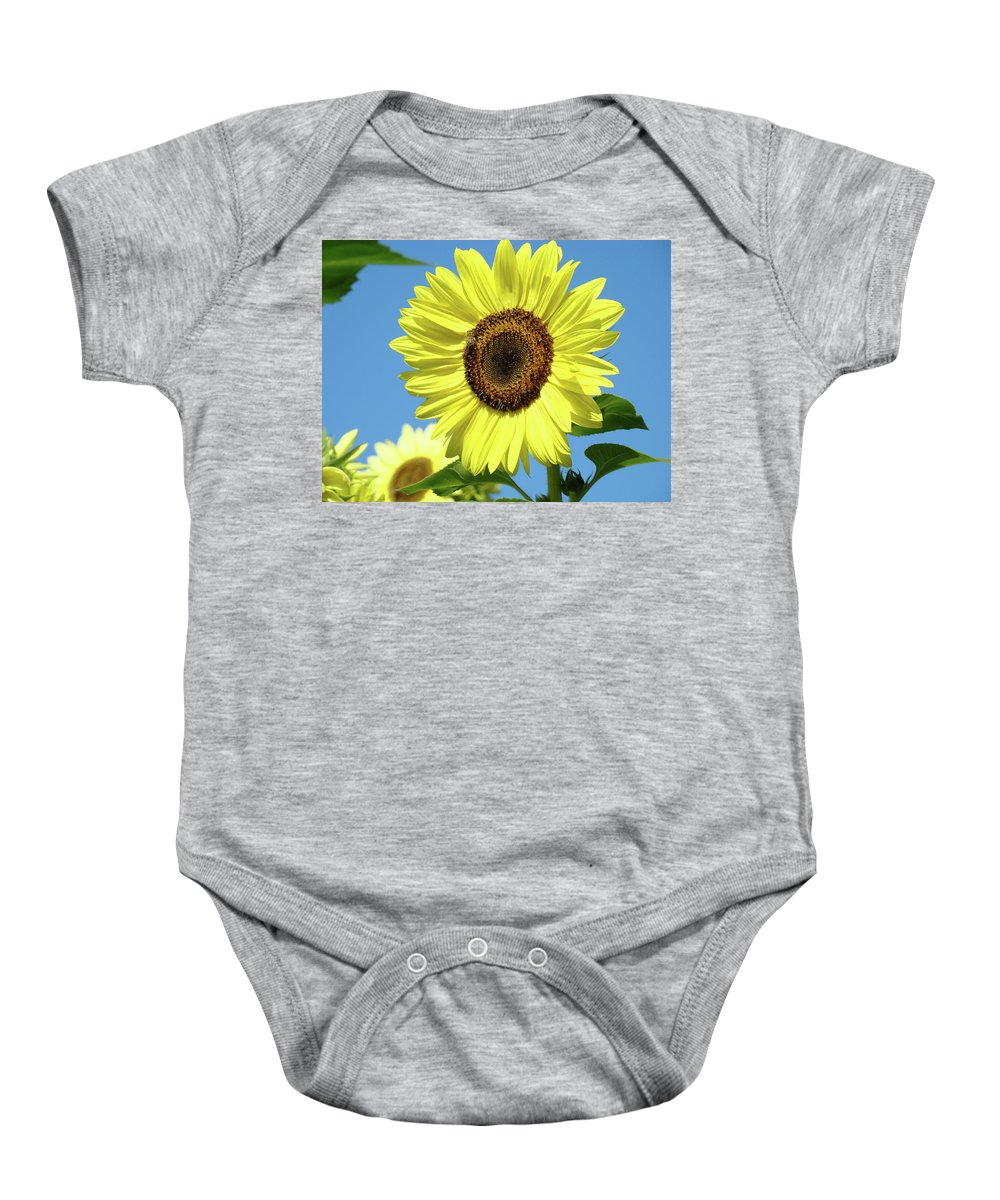 Sunflower Baby Onesie featuring the photograph Bright Yellow Sunflower Art Prints Blue Sky Baslee Troutman by Baslee Troutman