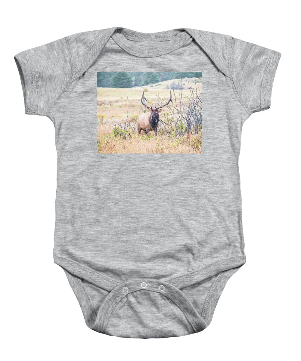 Colorado Baby Onesie featuring the photograph Bull Elk In The Rain by Bob Helmig