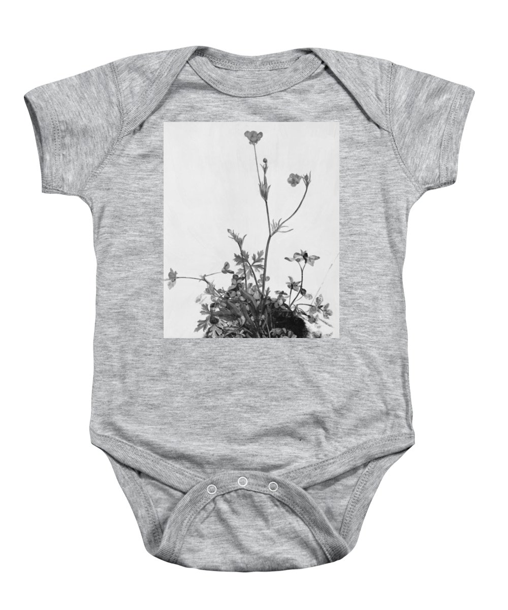 Butter Baby Onesie featuring the painting Butter Cups Red Clover And Plantain 1526 by Durer Albrecht