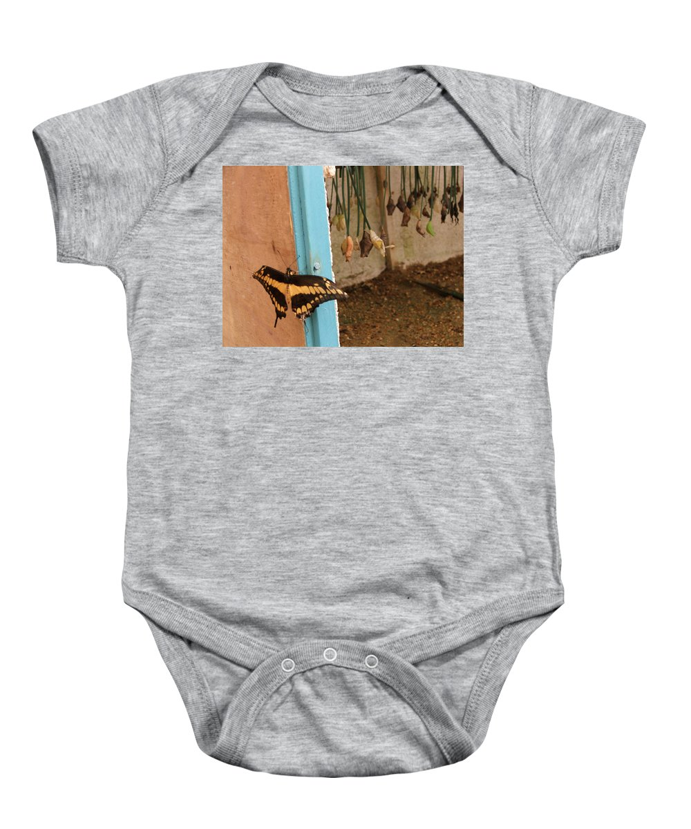Butterfly Baby Onesie featuring the photograph Butterfly Drying His New Wings by Heather Lennox