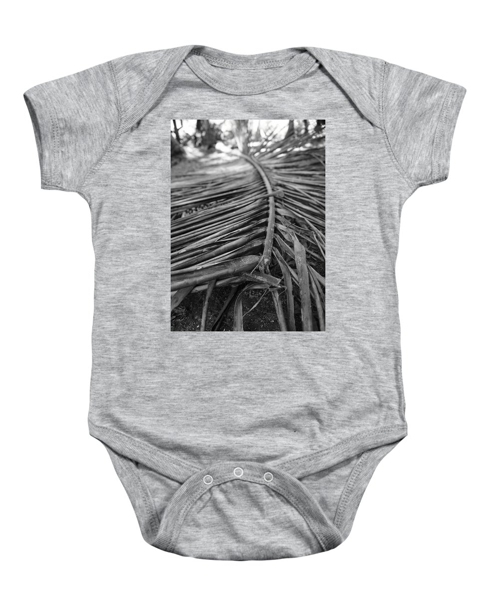 Palm Baby Onesie featuring the photograph Bw Fallen Frond by Jade Phoenix