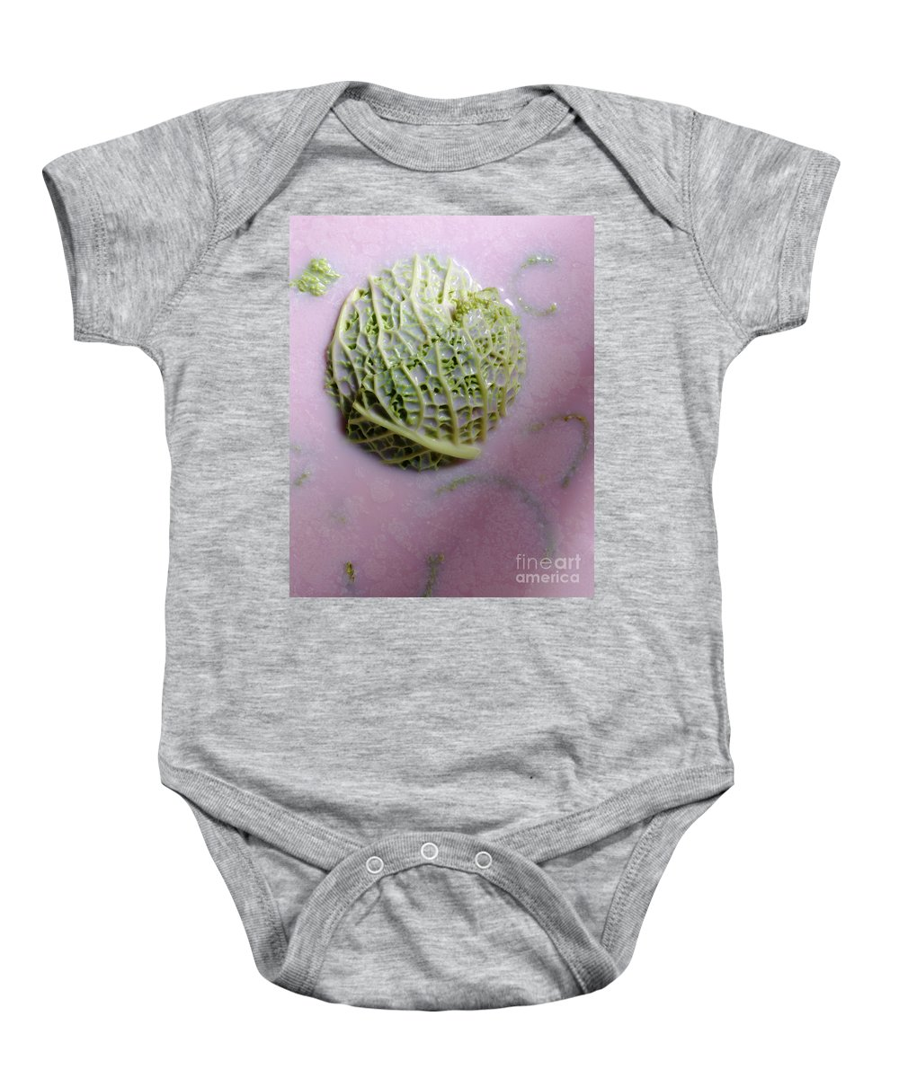 Arty Baby Onesie featuring the photograph Cabbage by Stefania Levi