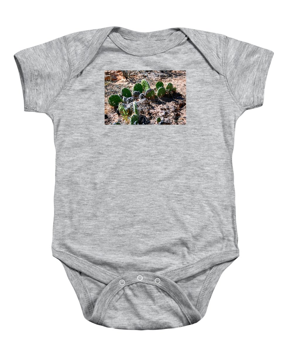 Cactus Plant Baby Onesie featuring the painting Cactus, Arches National Park by Corey Ford