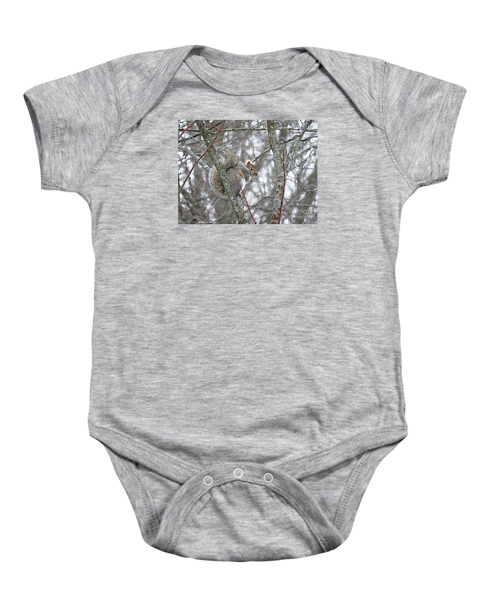 Grey Squirrel Baby Onesie featuring the photograph Camera Shy Grey Squirrel by Stephanie Forrer-Harbridge