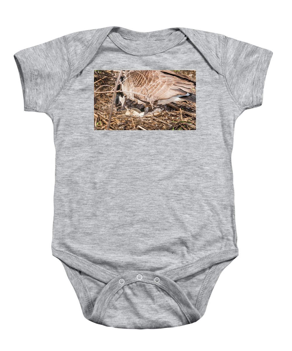 Heron Heaven Baby Onesie featuring the photograph Canada Goose Maternity Ward by Edward Peterson