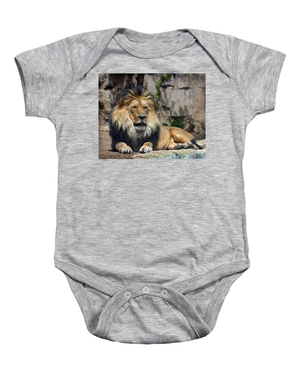 Lion Baby Onesie featuring the photograph Captive Pride by Anthony Jones