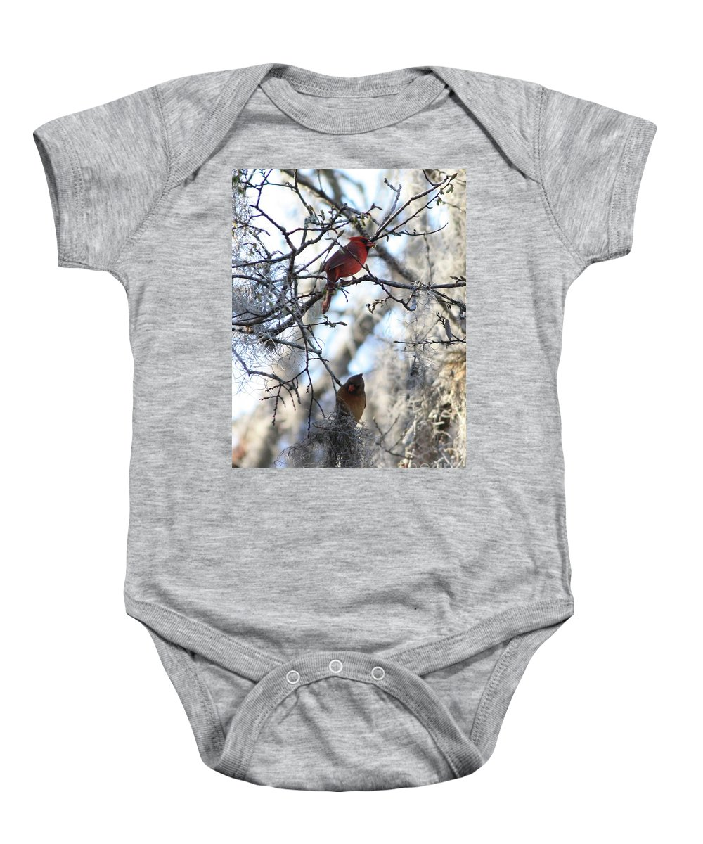Wildlife Baby Onesie featuring the photograph Cardinals In Mossy Tree by Carol Groenen