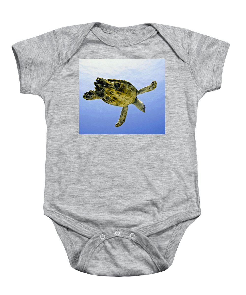 Turtle Baby Onesie featuring the photograph Caribbean Sea Turtle by Amy McDaniel