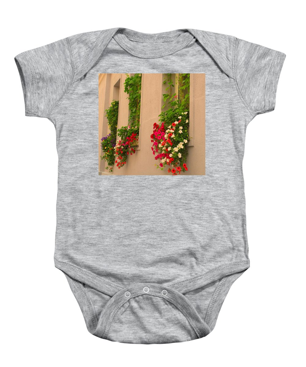 Flowers Baby Onesie featuring the photograph Cascading Windows by Ian MacDonald