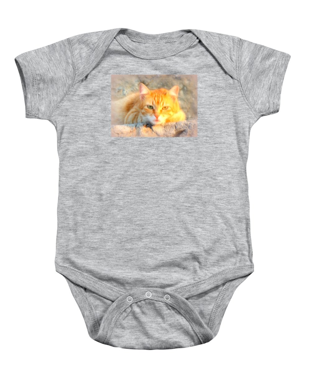 Troll Baby Onesie featuring the painting This Cat Has Been Waiting A Long Time For The Mouse by Hilde Widerberg