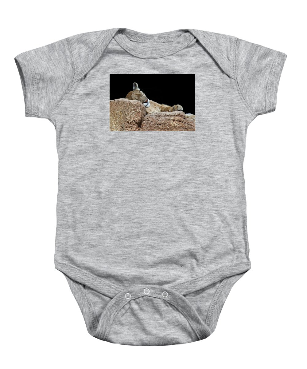 Mountain Lion Baby Onesie featuring the photograph Catnap by CR Courson