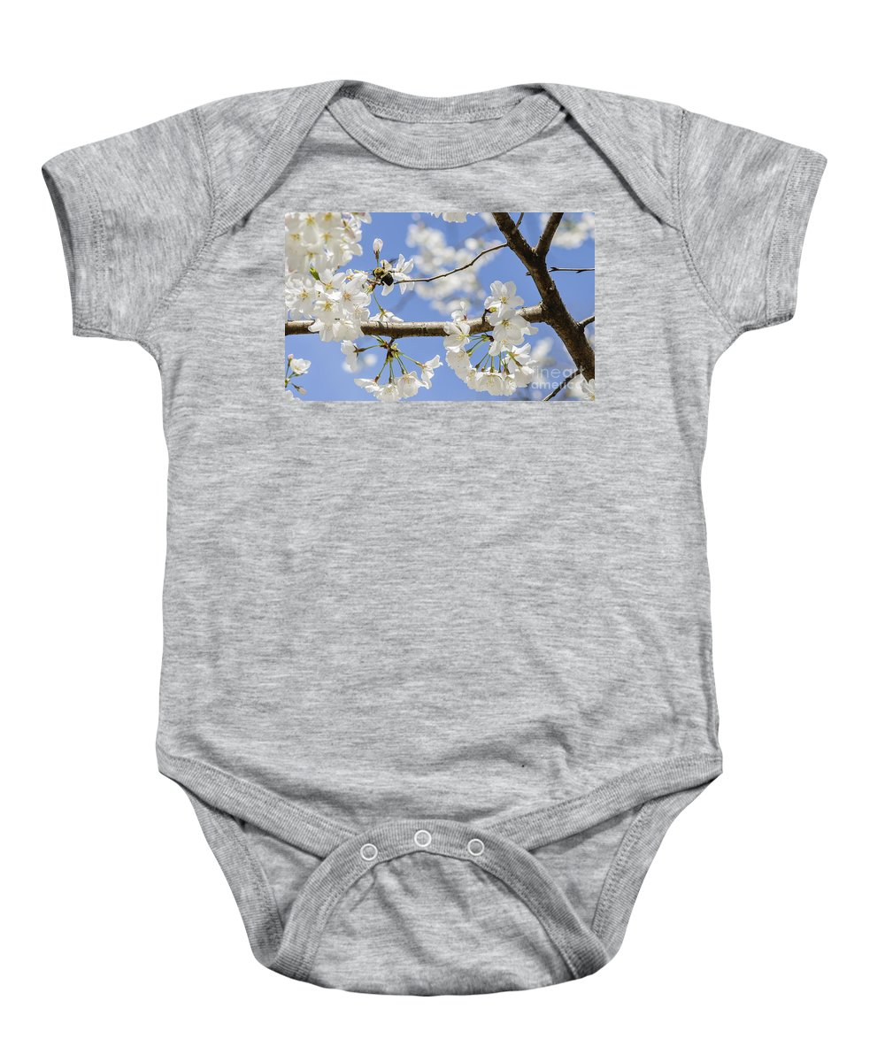 Bumblebee Baby Onesie featuring the photograph Cherry Blossoms And Bumblebee by Elvis Vaughn