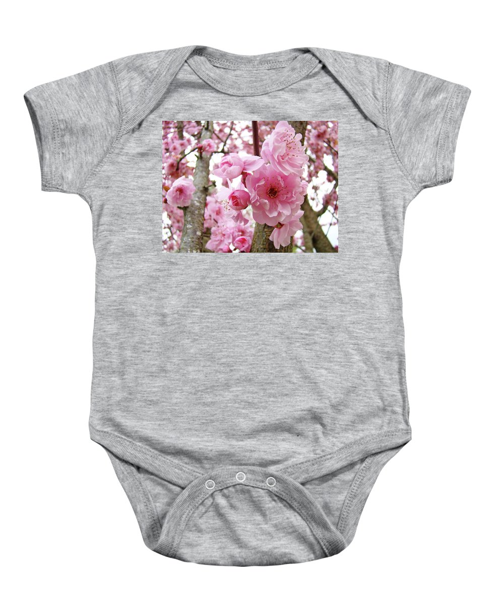 Nature Baby Onesie featuring the photograph Cherry Blossoms Art Prints 12 Cherry Tree Blossoms Artwork Nature Art Spring by Baslee Troutman