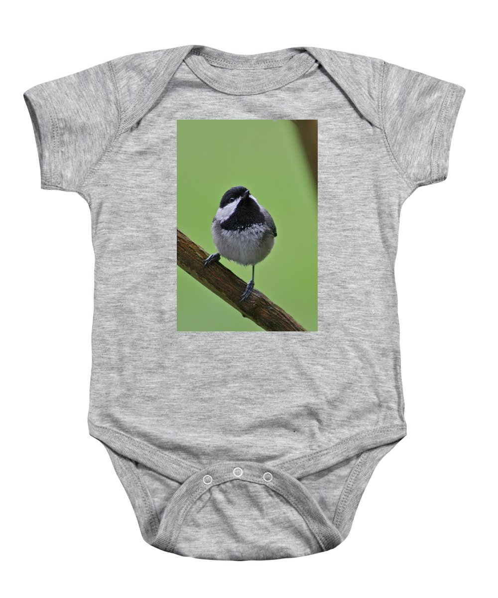 Chickadee Baby Onesie featuring the photograph Chic A Ddd by Cathie Douglas