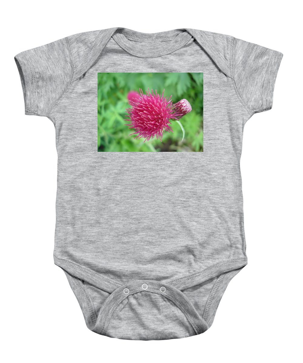 Thistle Baby Onesie featuring the photograph Cirsium Burgandy Thistle by Susan Baker