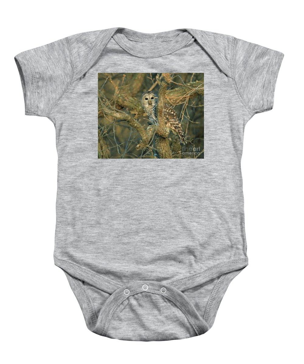 Barred Owl Baby Onesie featuring the photograph Clearly Visable by Gail Huddle