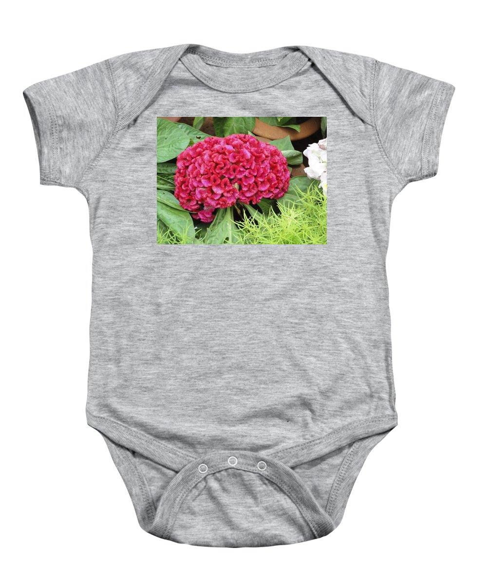 Flower Baby Onesie featuring the photograph Cockscomb Flower by Usha Shantharam