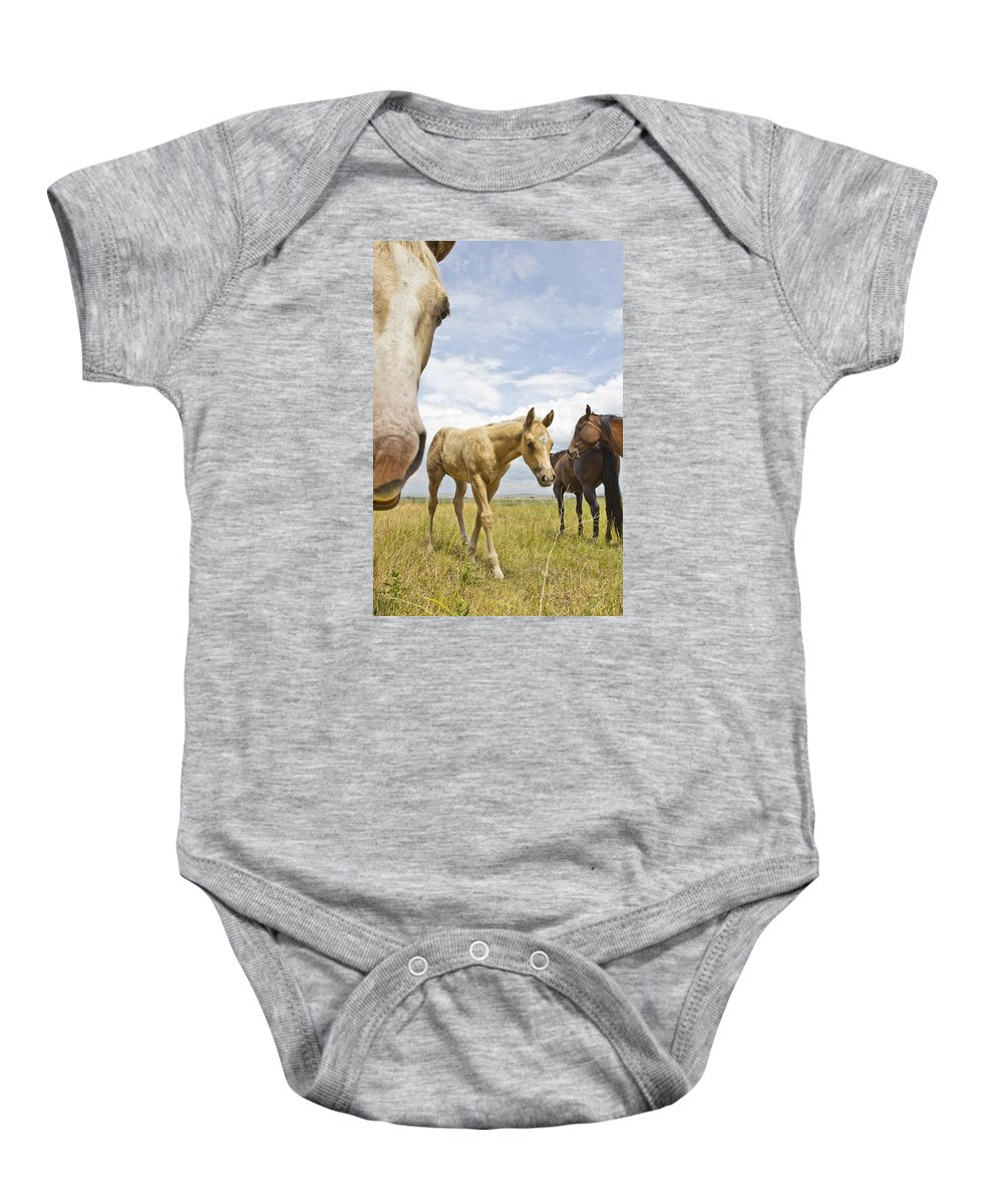 Joseph Baby Onesie featuring the photograph Colt 018 by Charles Frates