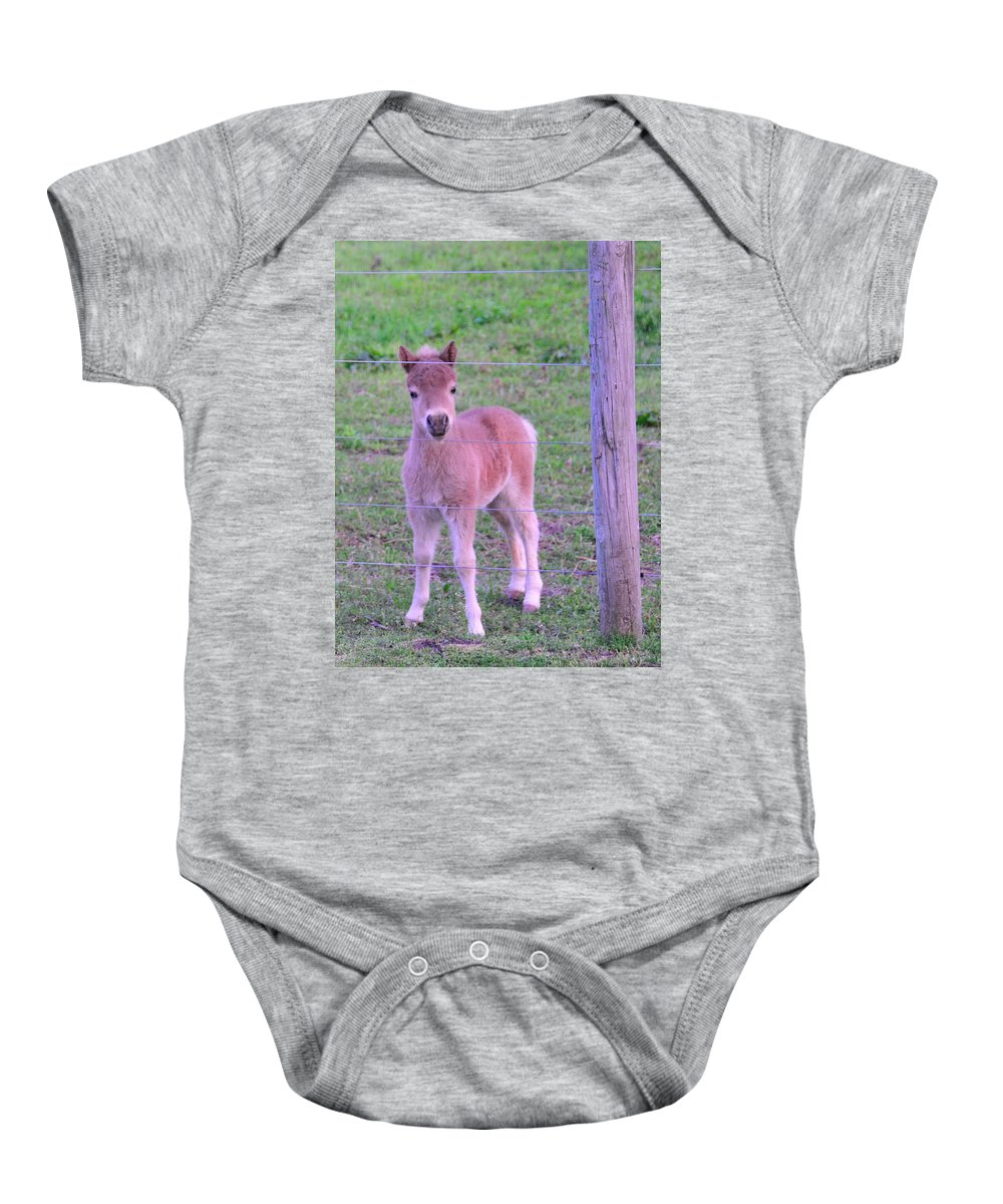Young Animals Baby Onesie featuring the photograph Colt Pony by David Arment