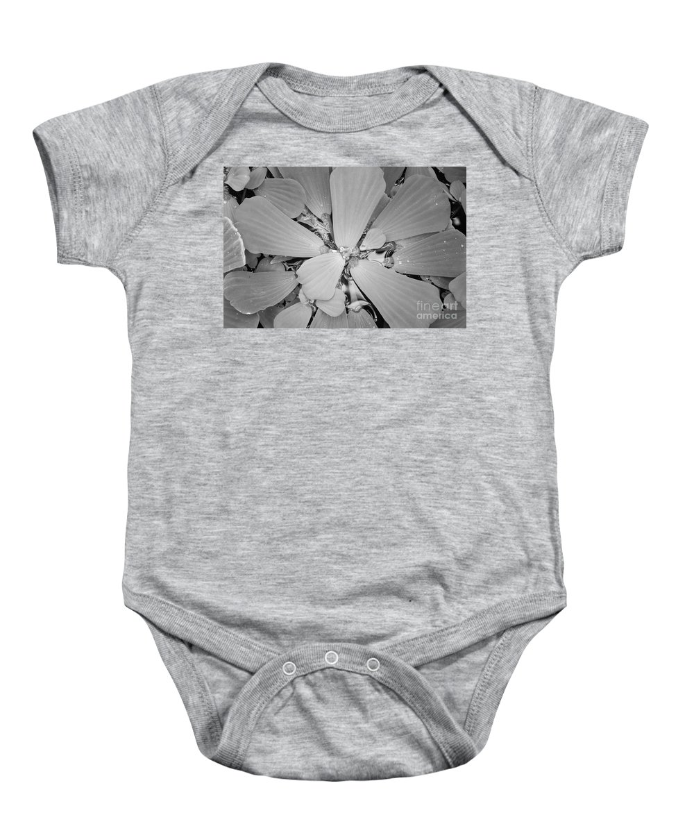 Nature Baby Onesie featuring the photograph Conservatory Nature In Black And White 1 by Carol Groenen