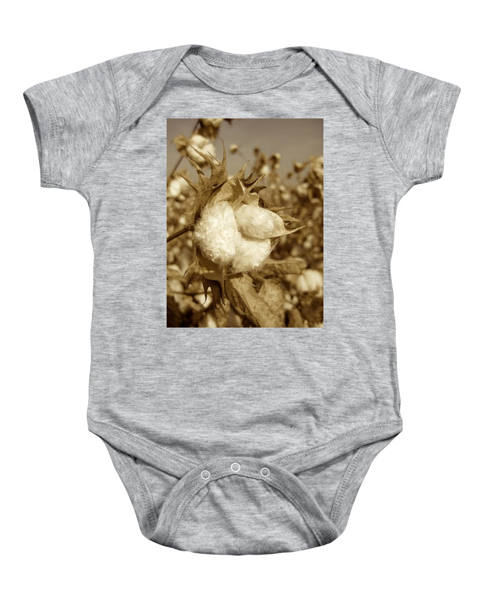 Cotton Baby Onesie featuring the photograph Cotton Sepia by Brooke Roby