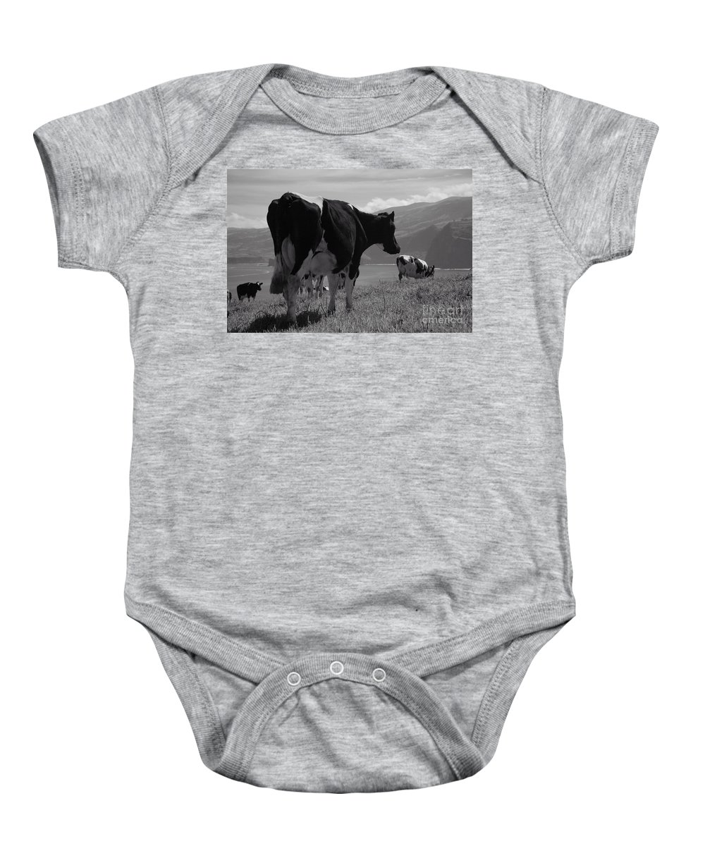 Azoren Baby Onesie featuring the photograph Cows by Gaspar Avila