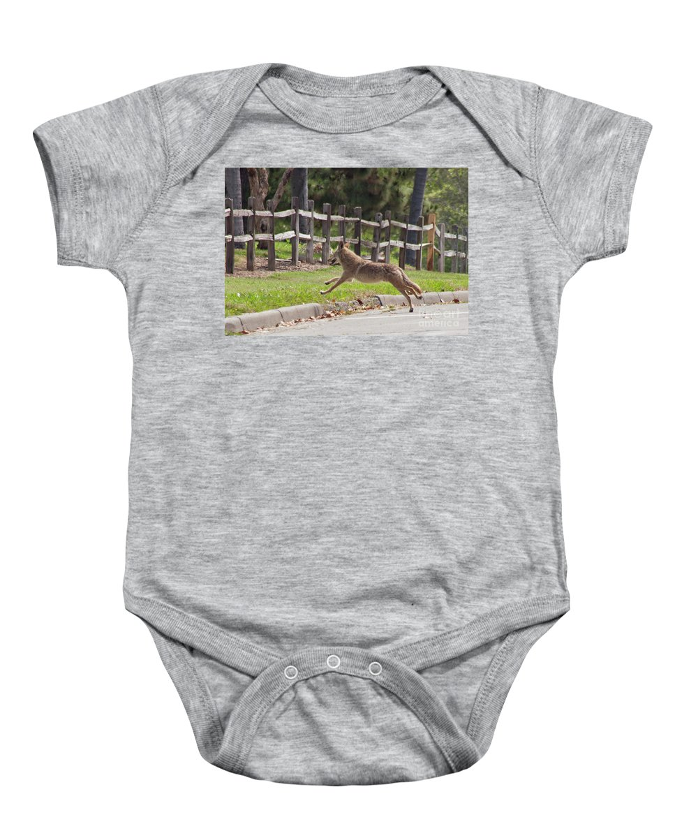 California Baby Onesie featuring the photograph Urban Coyote by Michael Ziegler