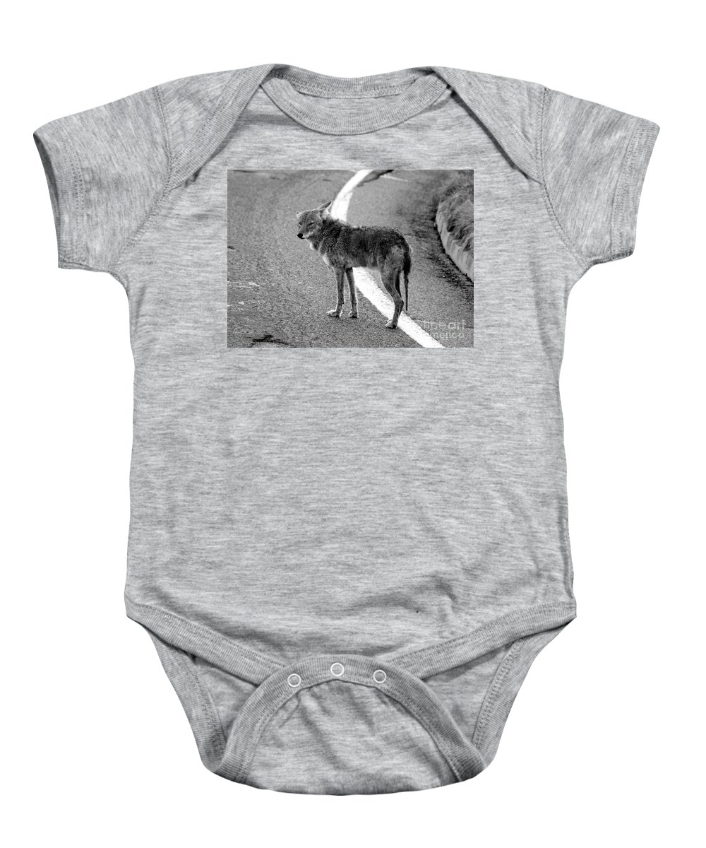 Coyote Baby Onesie featuring the photograph Coyote On The Road by David Lee Thompson