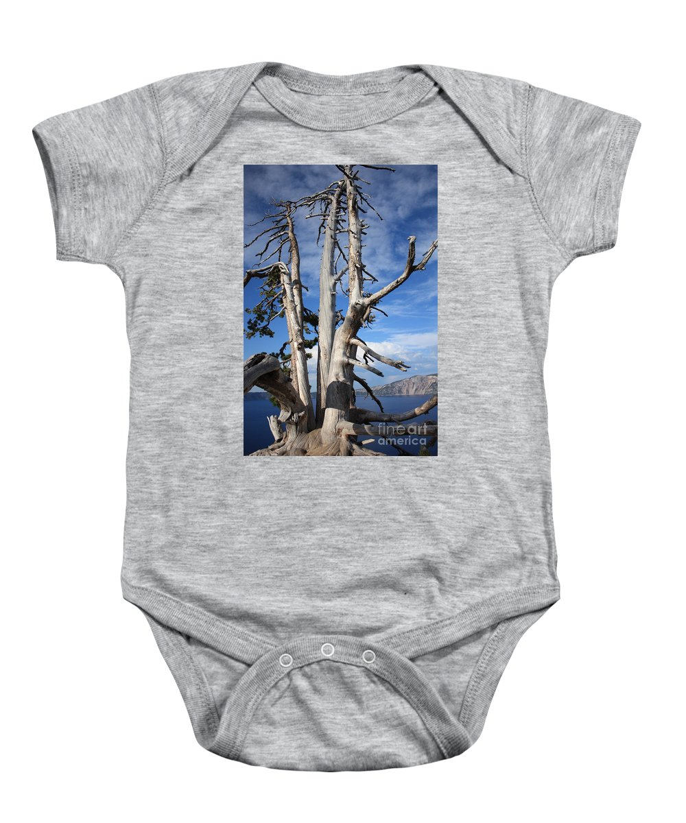 Tree Baby Onesie featuring the photograph Crater Lake Tree by Carol Groenen