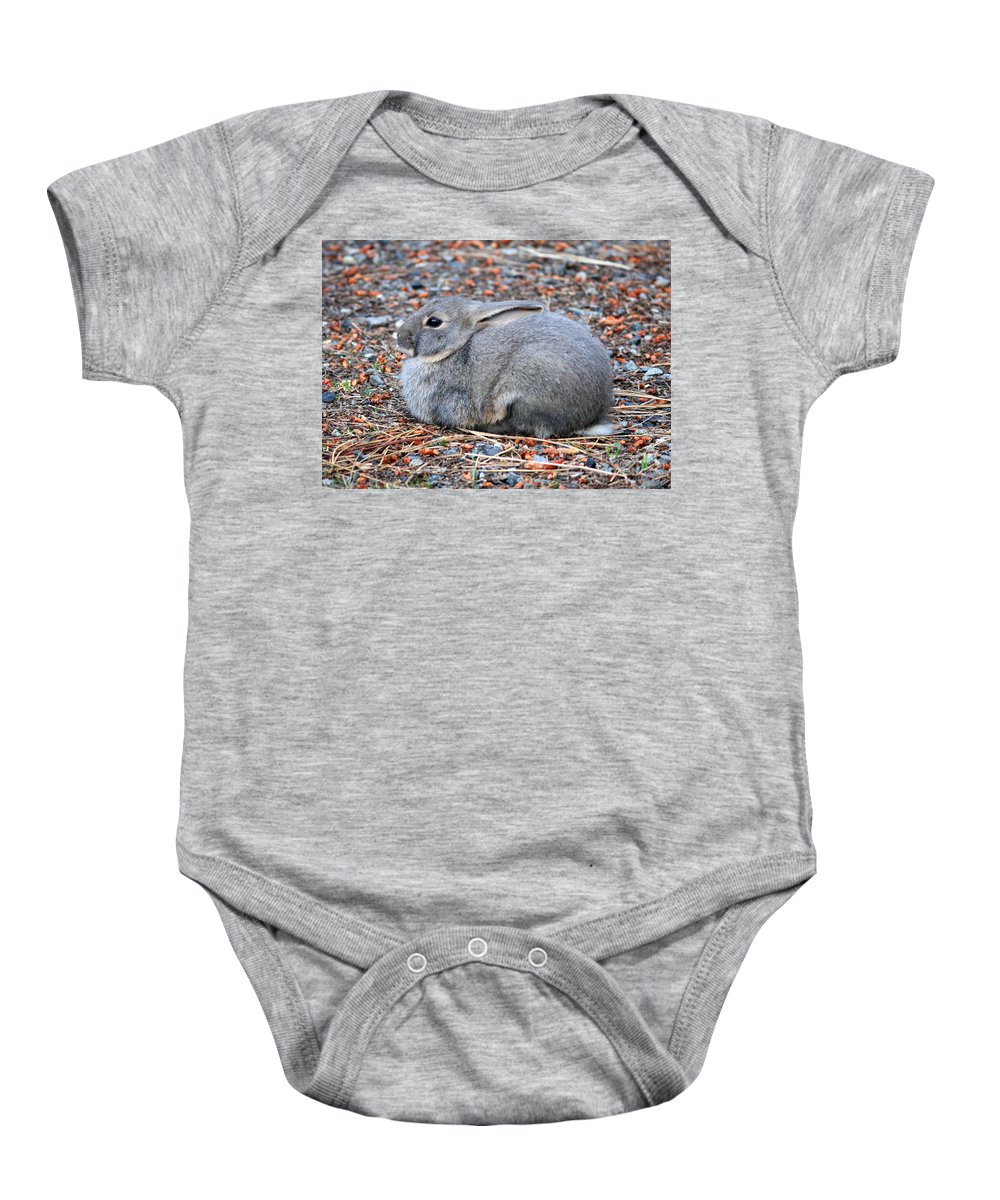 Rabbit Baby Onesie featuring the photograph Cuddly Campground Bunny by Carol Groenen