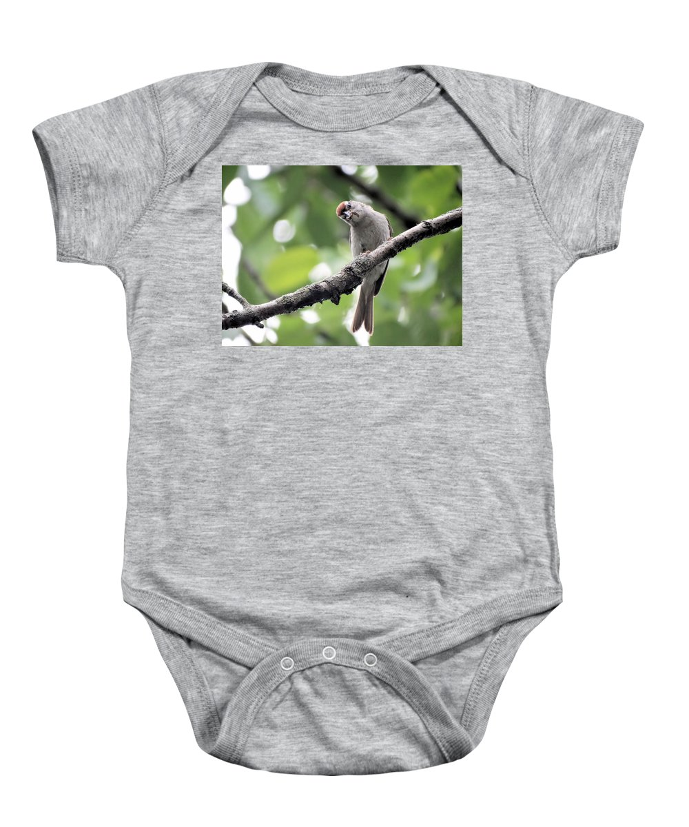 Bird Baby Onesie featuring the photograph Curiosity by Theresa Campbell