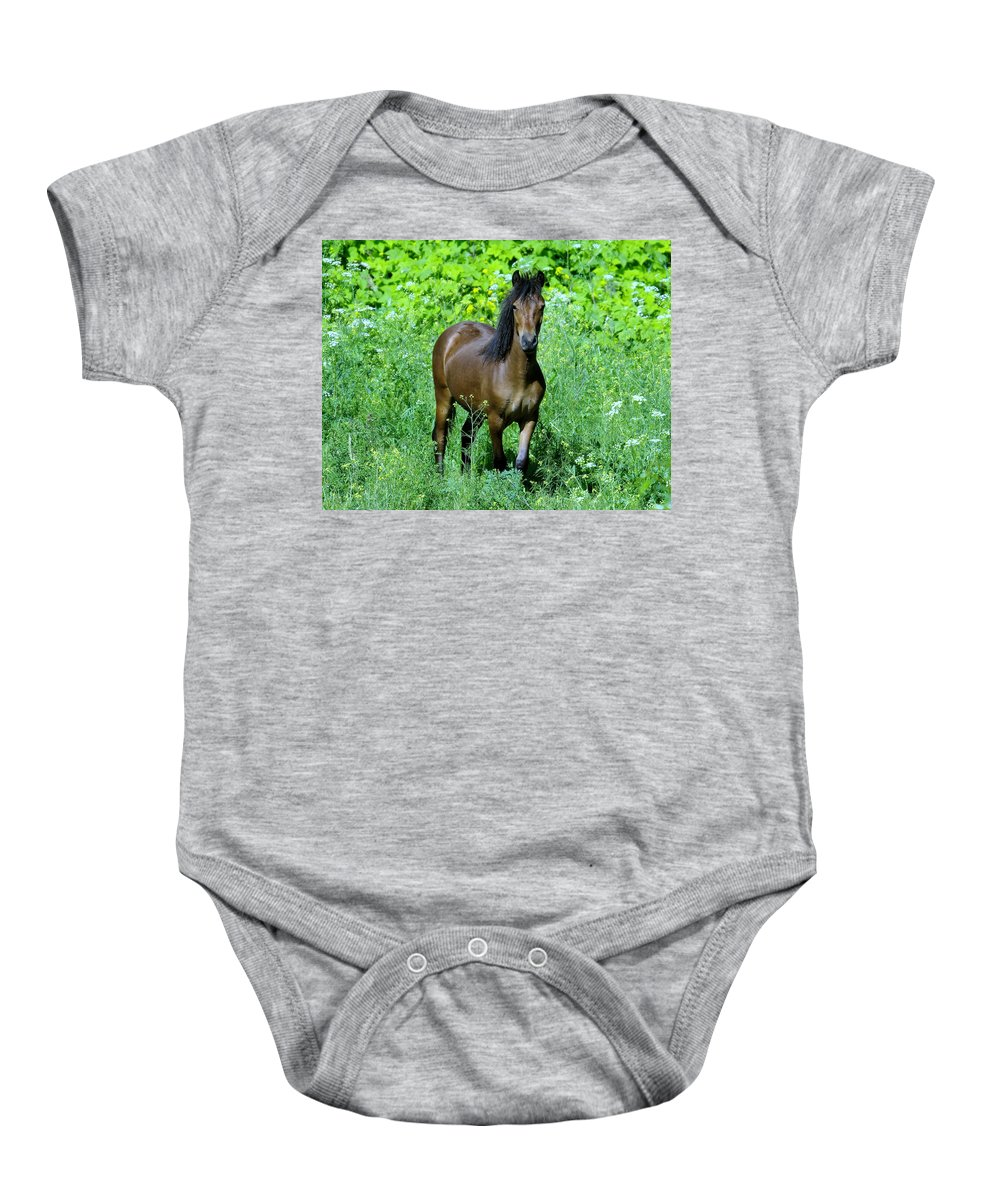 Horse Baby Onesie featuring the photograph Curious Horse by Jeff Swan