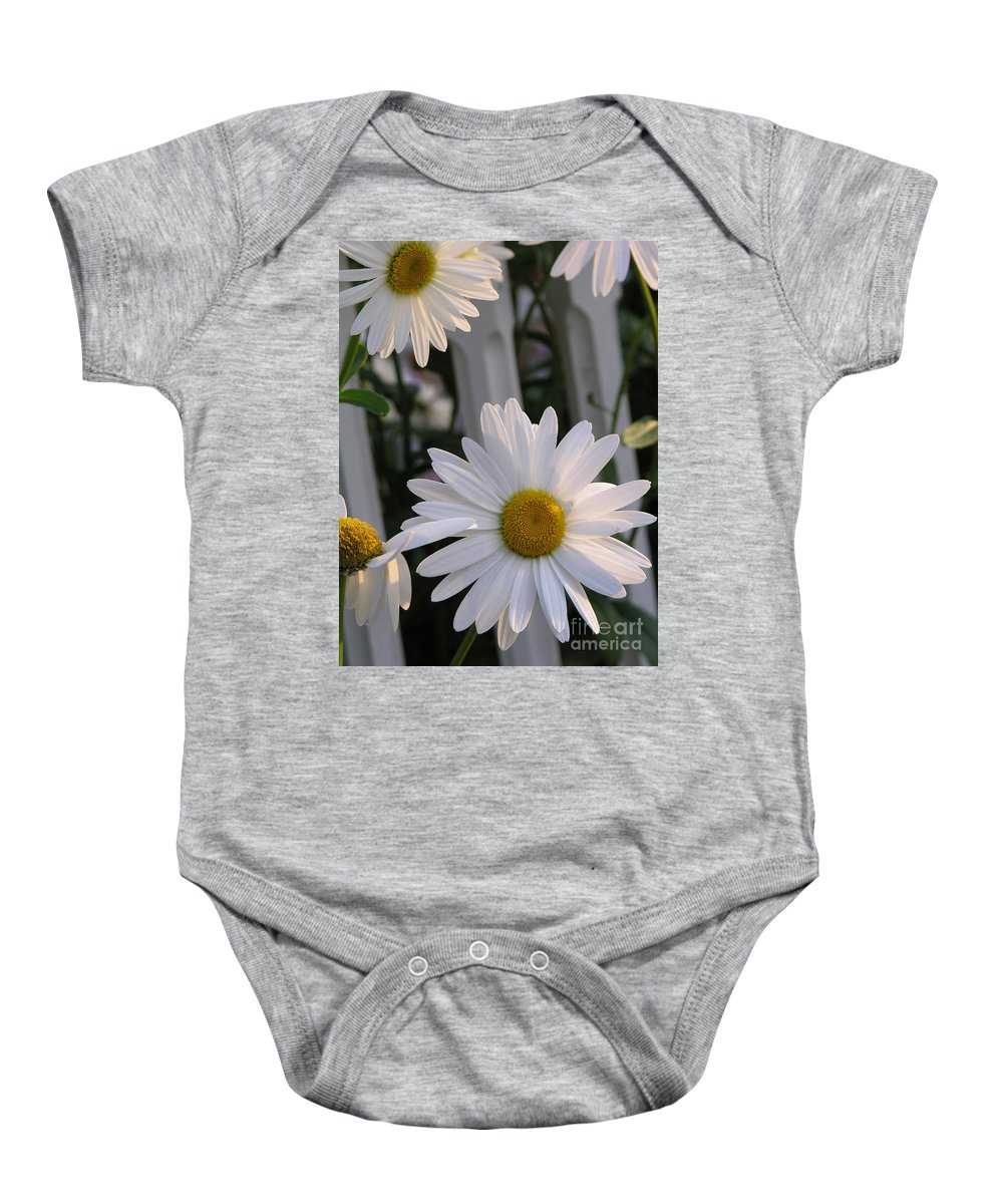 Daisy Baby Onesie featuring the photograph Daisy by Diane Greco-Lesser
