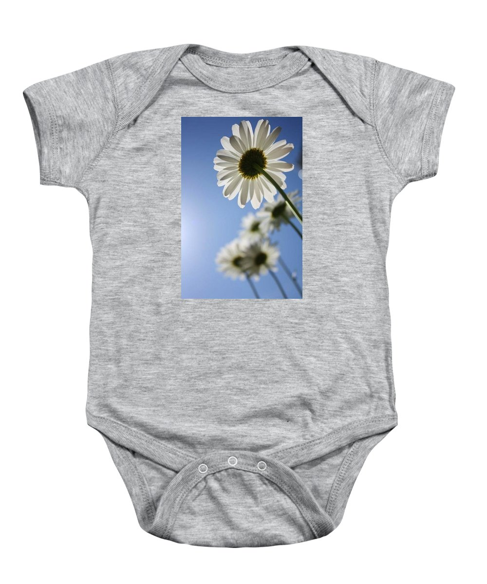 Daisy. Daisies Baby Onesie featuring the photograph Daisy Parade by Yvonne Scribani
