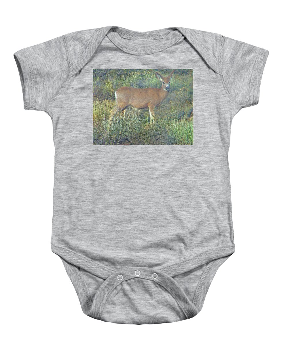Abstract Baby Onesie featuring the photograph Dawn Names The Deer by Lenore Senior
